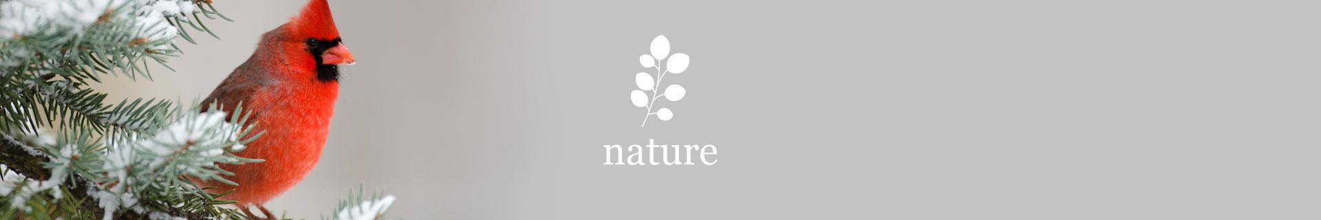 Kleinburg_nature2